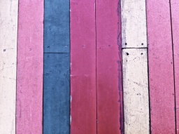 coloured lines
