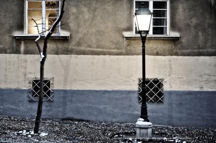 light / dark